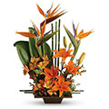 Premium Florist® Tropical Inspiration, New York