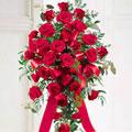 Rosas de Condolencias, Argentina