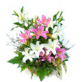 Lilies Basket, Rep. Dominicana