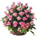 Roses Basket, Rep. Dominicana