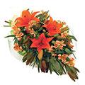 Love Bouquet, Venezuela
