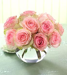 Bowl Roses