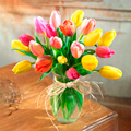 Tulipanes Para Tí, Usa