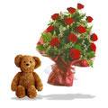 Teddy & Roses, -Brazil