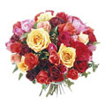 Rainbow Premium Roses, Mexico