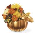 Halloween Bouquet, Toledo
