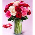 Romantic Roses, Panama