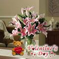 My Valentine Lilies, Usa