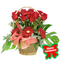 Christmas Red Basket, Mexico