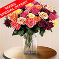 Blooming Love OFERTA!, Fontana