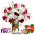Pure Christmas Flowers, Usa