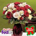 Merry Christmas Roses, Usa