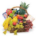 Taste Basket, -Panama