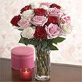 Rosas Románticas, Madriz