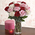 Rosas Románticas, Rivas