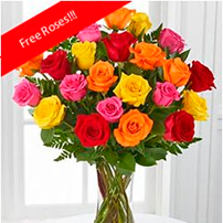 Rainbow Roses OFERTA!, New York