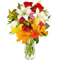 All Smiles Arrangement, P.A. Cerda (Santiago)