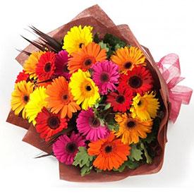 Bouquet Gerberas <br><b>OFERTA!</b>