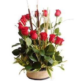 Abrazo de Rosas