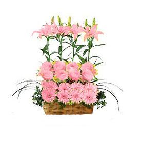 Magia de flores