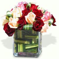 Qubik Roses, España