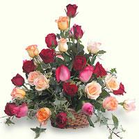Florist Roses Basket, España